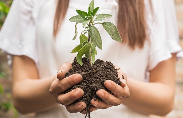 Bioplástico: uma nova alternativa sustentável